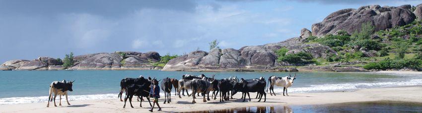 Ile-isaloatra-Madagascar -Photo Anapia voyages