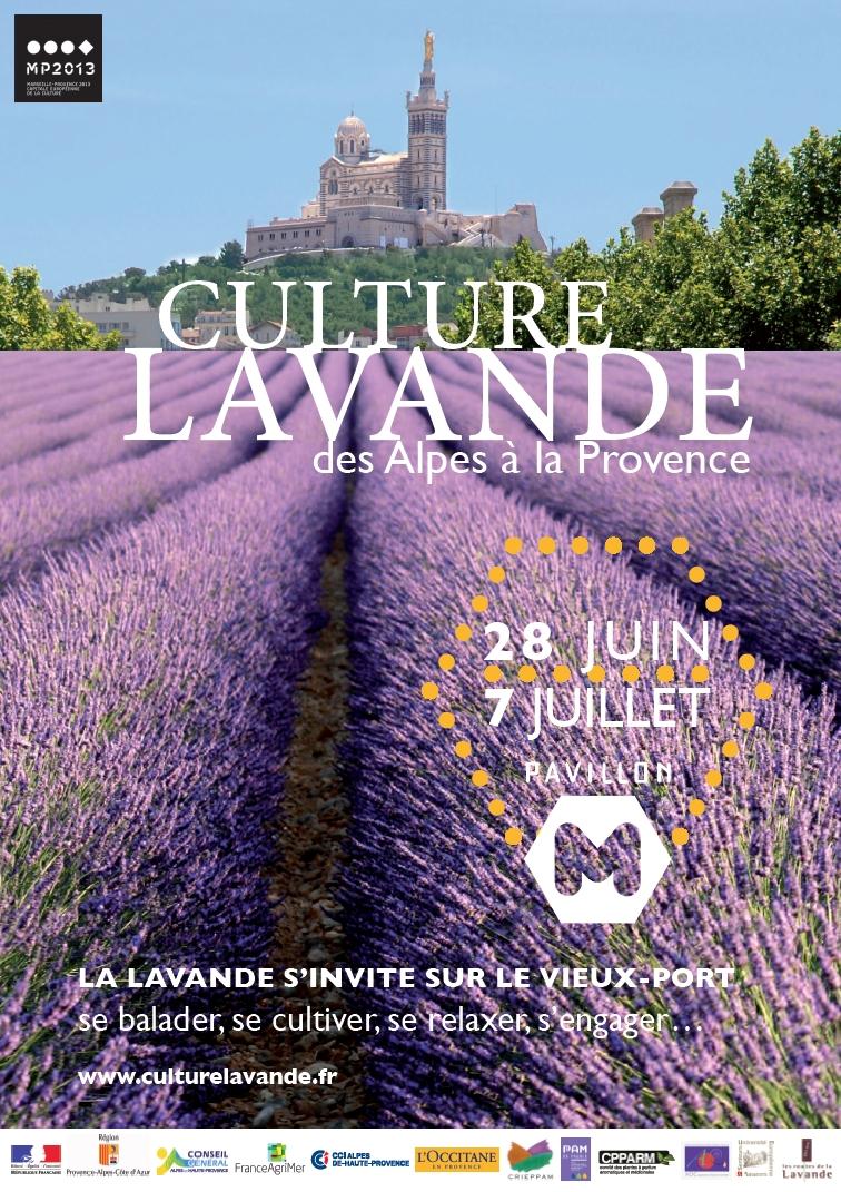 Culture lavande -Marseille-Provence-2013