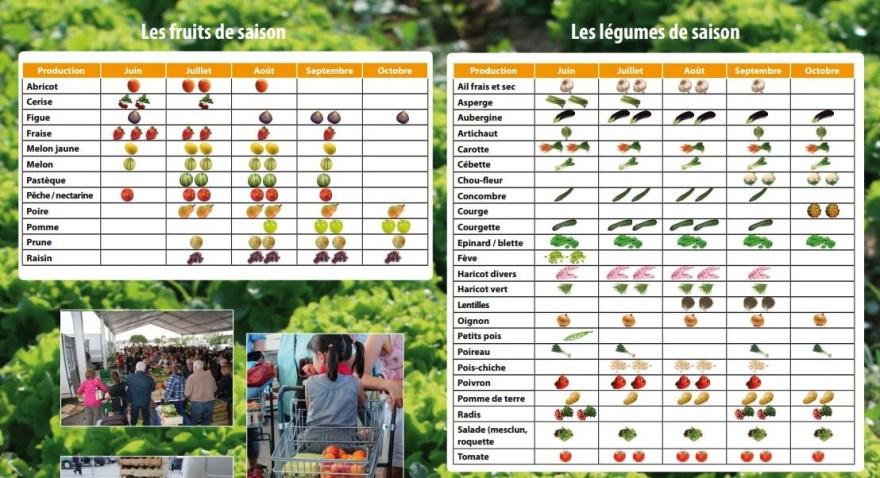 Calendrier des fruits de saisons - Agglo-paysdaix.fr